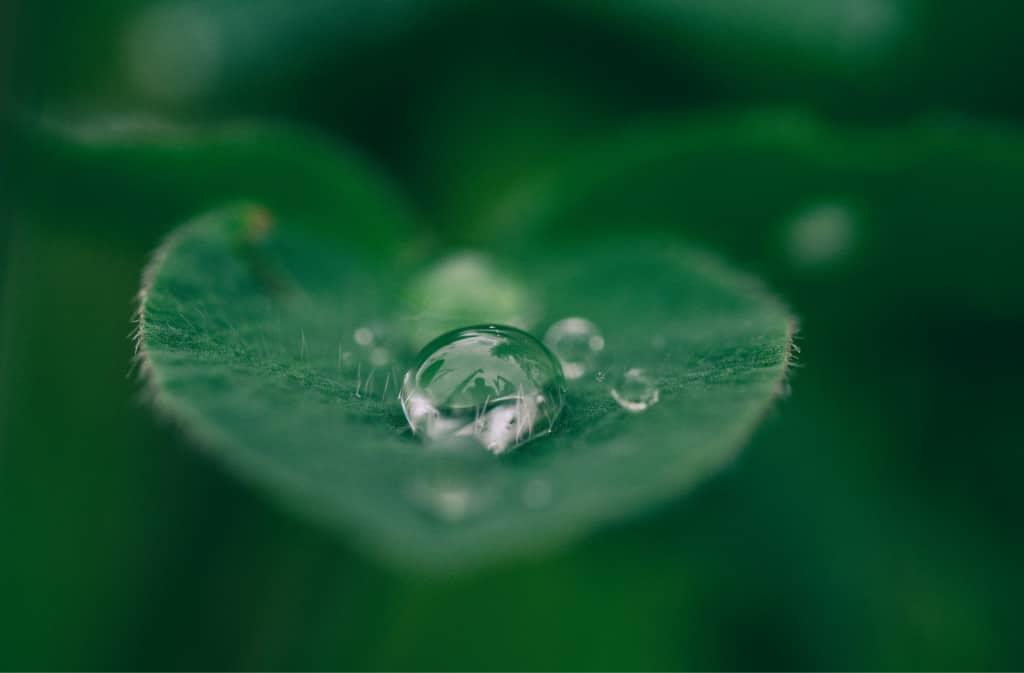 Was du über nachhaltige Anlagen noch nicht wusstest – Q & A Teil 2